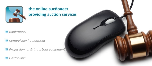 The online auctioneer providing auction services